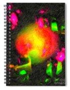 Fractal Art 1 Spiral Notebook