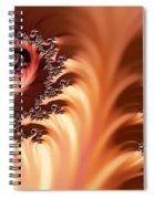 Fractal Desert Spiral Notebook