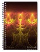 Fractal Fireworks Spiral Notebook