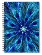Fractal Flora 062610 Spiral Notebook