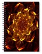 Fractal Floral 062610a Spiral Notebook