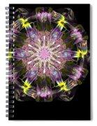 Fractal Flowers 10-20-09 Spiral Notebook
