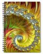 Fractal Spiral Three Spiral Notebook