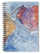 Fractured Seasons Spiral Notebook