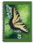 Fragile Beauty Spiral Notebook