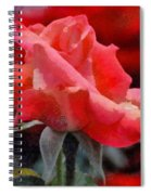 Fragmented Pink Rose Spiral Notebook