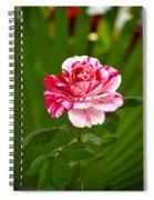 Fragrant Pink Spiral Notebook