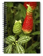 Fragrant Red Spiral Notebook
