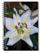 Fragrant White Lily Spiral Notebook