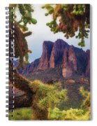 Framed By Cholla Spiral Notebook