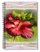 Framed Red Hibiscus Spiral Notebook