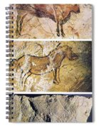 France And Spain: Cave Art Spiral Notebook