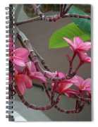 Frangipani Flowers Spiral Notebook