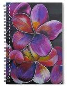 Frangipani  Spiral Notebook