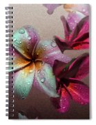 Frangipani With Overlay Spiral Notebook