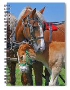 Franklinville Plowfest 1417b Spiral Notebook