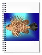 Frappers Delight Spiral Notebook