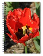 Frayed Tulip Spiral Notebook
