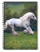 Free Billy Spiral Notebook