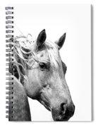 Free Spirit Spiral Notebook