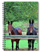 Free Us Spiral Notebook