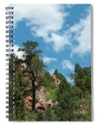 Freebird Spiral Notebook