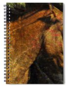 Freedom Is Intrinsic Spiral Notebook