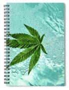 Freeeee Spiral Notebook