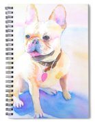 French Bulldog Watercolor Spiral Notebook