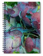 French Hydrangea Rainbow Spiral Notebook