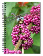 French Mulberry Spiral Notebook