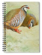 French Partridge By Thorburn Spiral Notebook