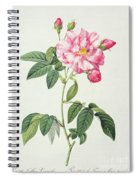 French Rose Spiral Notebook
