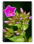 Fresh And Happy Spiral Notebook