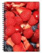 Fresh Berry Salad  Spiral Notebook