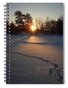Fresh Deer Tracks At Sunrise Spiral Notebook