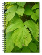 Fresh English Golden Hop Spiral Notebook