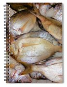 Fresh Fishes In A Market 4 Spiral Notebook
