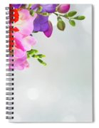 Fresh Freesia Flowers On Blue Spiral Notebook