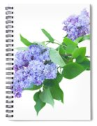Lilac Twig Spiral Notebook