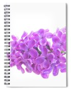 Fresh Lilac Spiral Notebook