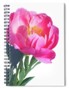 Japanese Peony Spiral Notebook