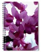 Fresh Redbud Blooms Spiral Notebook