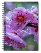 Fresh Spring Rain Spiral Notebook