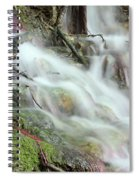 Fresh Spring Water Nature Detail Spiral Notebook
