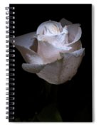 Fresh White Rose Spiral Notebook
