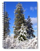 Fresh Winter Solitude Spiral Notebook