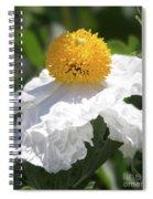 Fried Egg Poppy Spiral Notebook