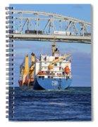Frieda And Blue Water Bridge Spiral Notebook