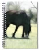 Friend Of Distinction  Spiral Notebook